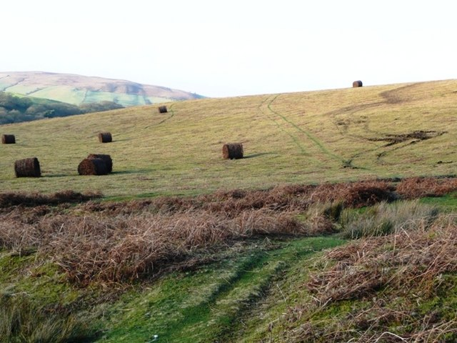 Straw bales on the moorland