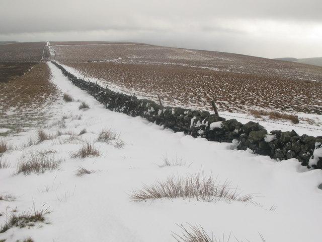 Middlehope Moor (5)