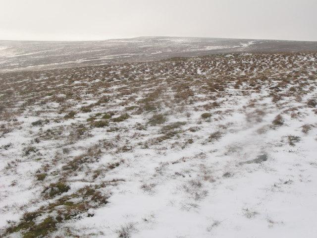 Middlehope Moor (6)