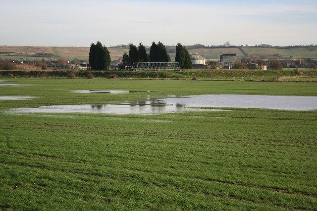 Waddington Low Fields