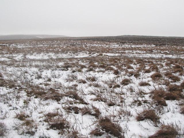 Middlehope Moor (7)