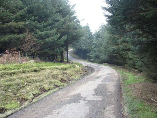 The flat, upper, section of the Porth-y-Nant road