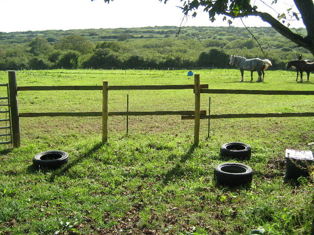 Horse field at Bosulval