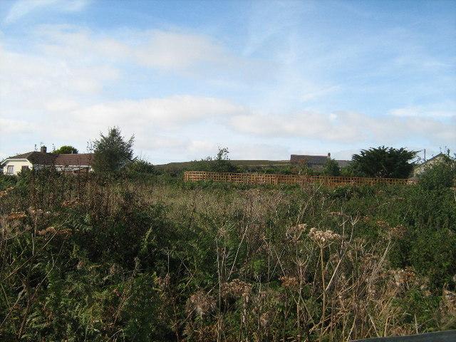 Scrubland at Mulfra