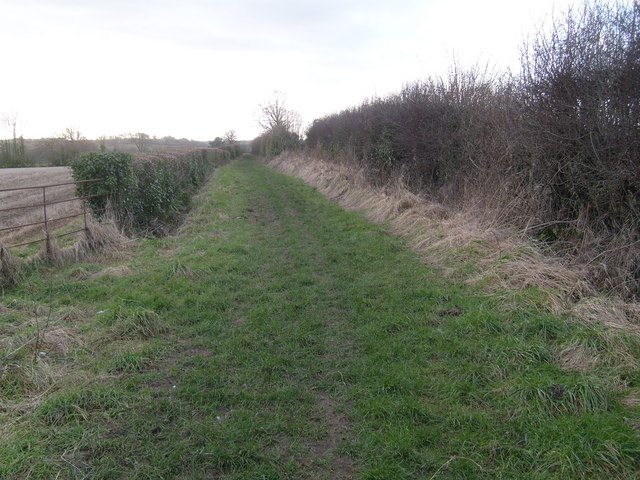 The Lane from East Lambrook to Middle Lambrook