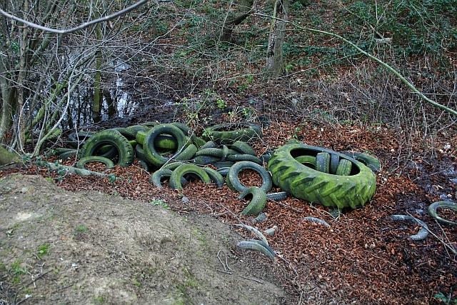 Dumped Tyres in Stubbs Wood