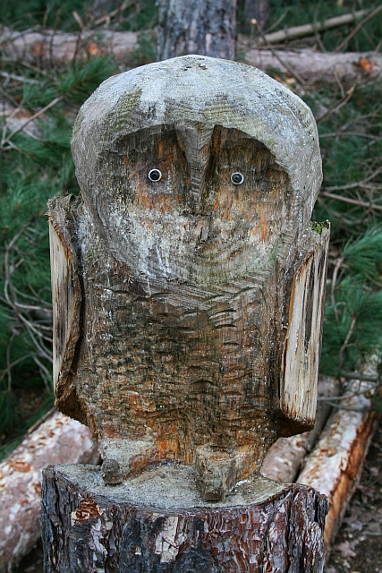 Carved Owl in Haw Park Wood
