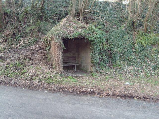 Overgrown Bus Shelter