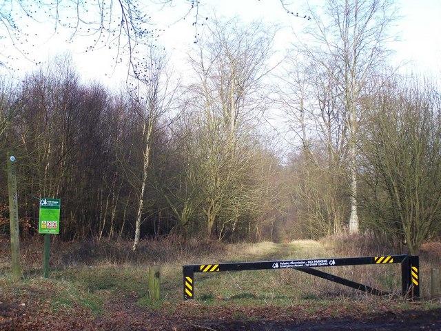 Bridleway in Brereton Hayes Wood