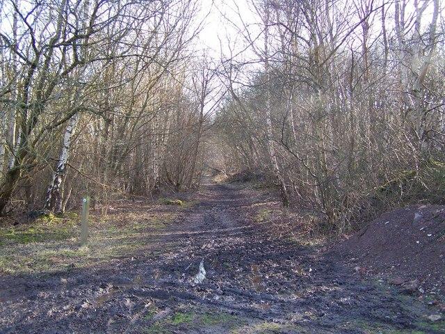 Footpath Near The Slade