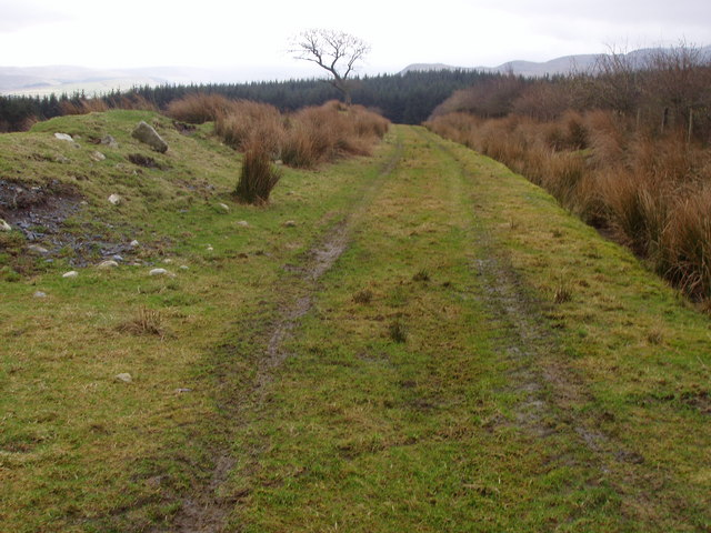 Old grass track