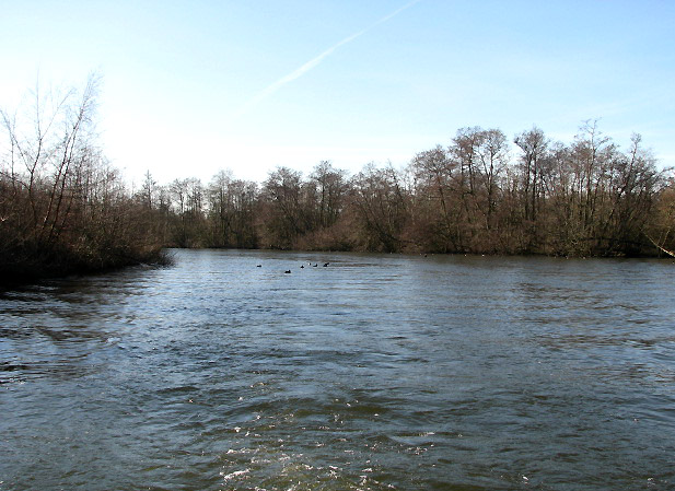 View upstream