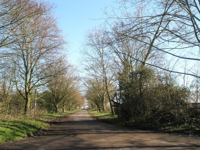Pook Lane, Warblington