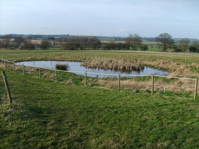 Farm Pool