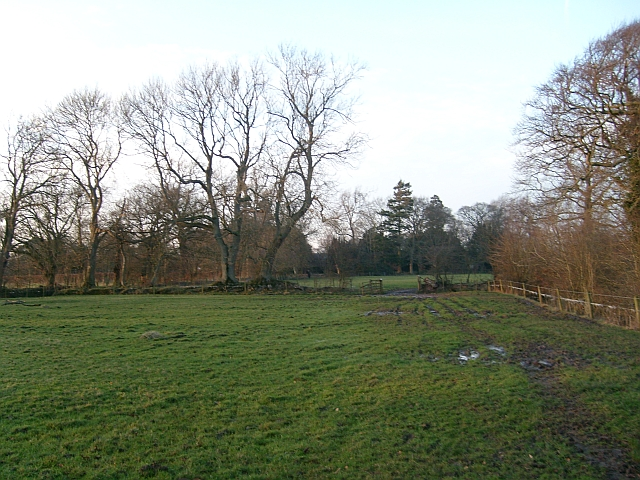Track to Scaleby Castle