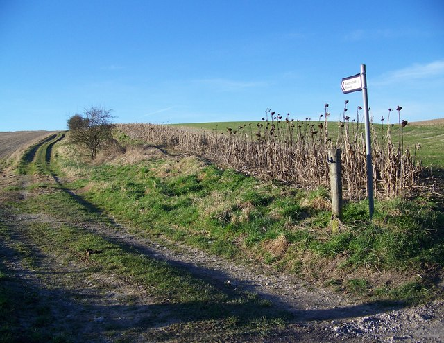 Restricted byway near Fifield Bavant