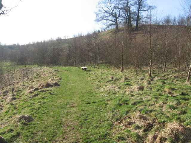 Kerse Woodland by the River Nethan