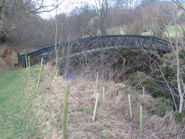 Footbridge over River Nethan