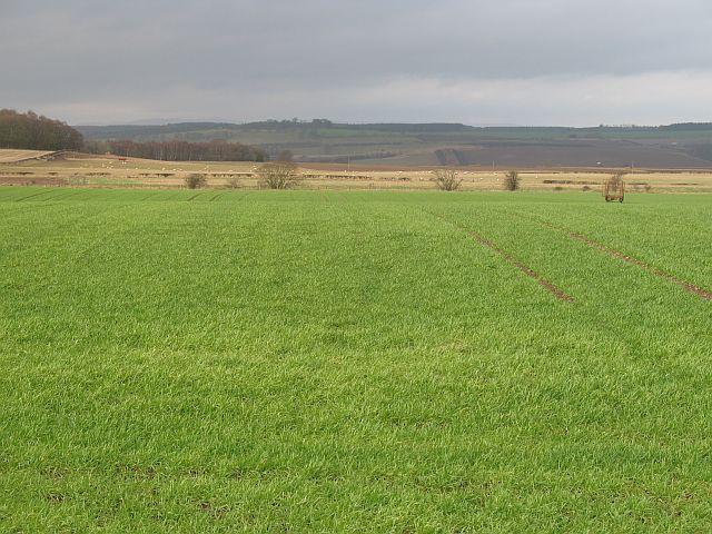 Winter crops, Garvock