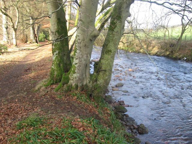River Nethan path