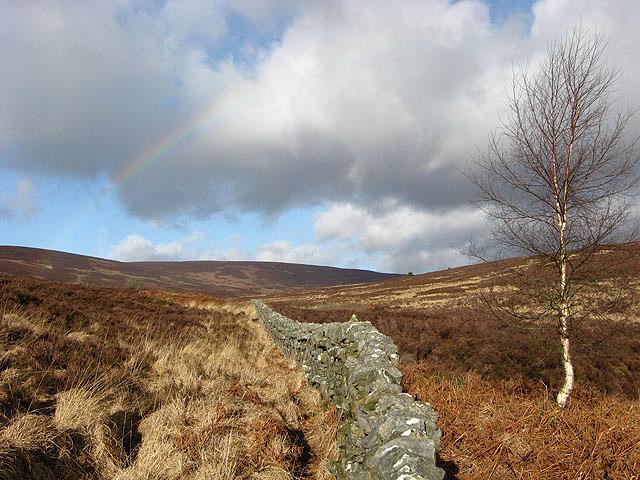 Moorland between Whita Hill and Middlemoss Head