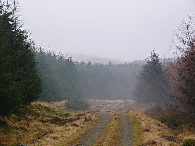 Forestry road over Glenkitten Fell