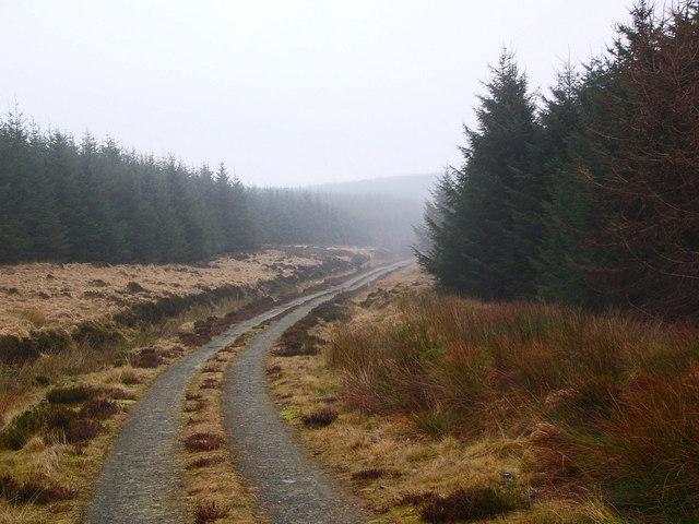 Forestry road, Glenkitten Fell