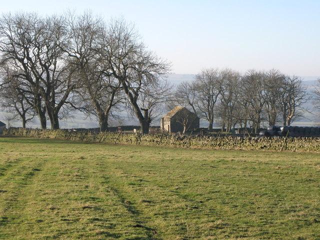 Pastures above Housty Bastle