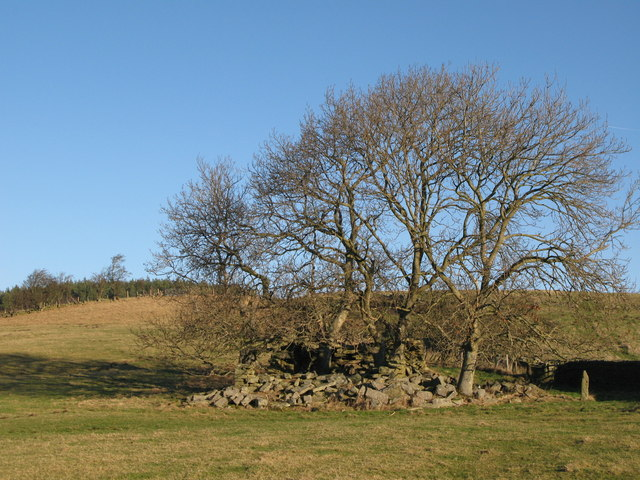 Ruin near Housty