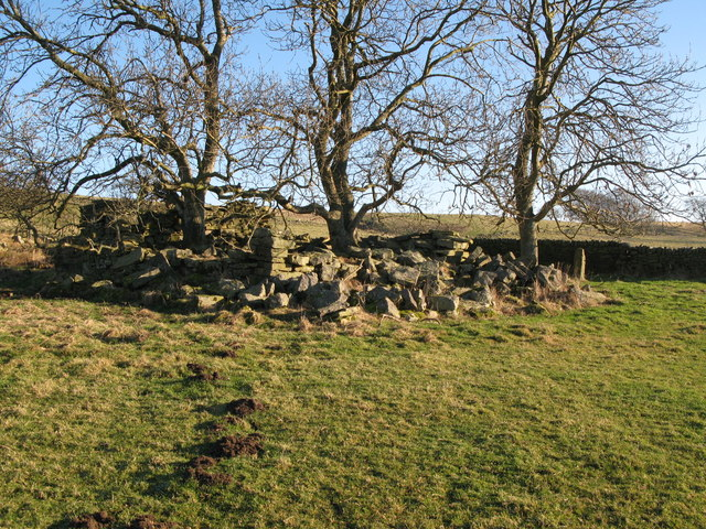 Ruin near Housty (2)