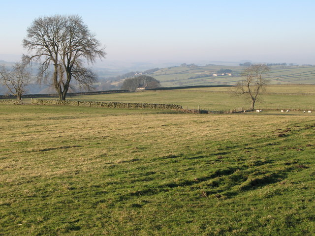 Pastures north of Housty (2)