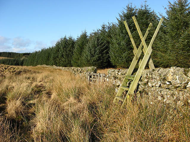 A well constructed stile