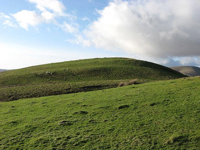 Hog Hill