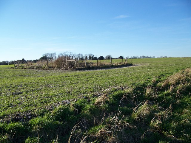 Tumulus on Fifield Down