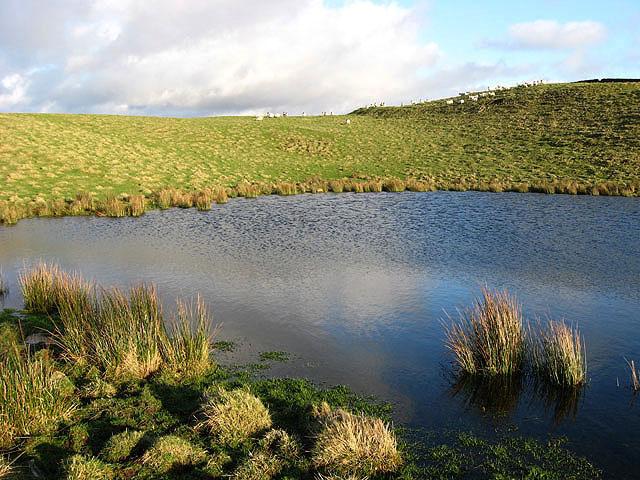 A pond on Loch Hill