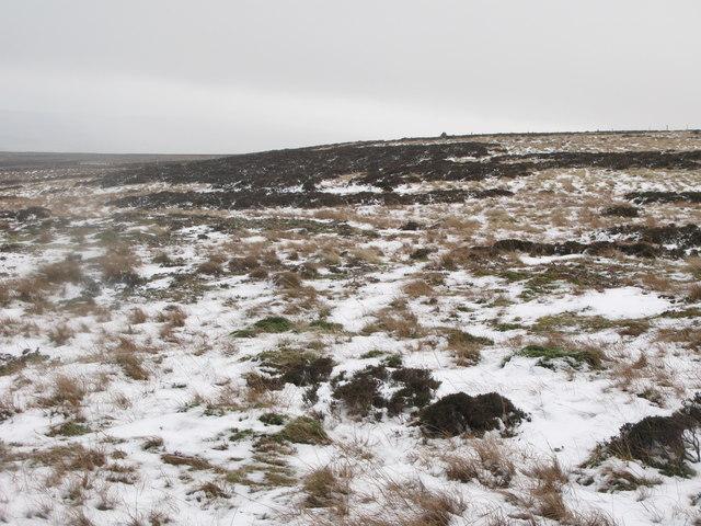 Towards White Edge