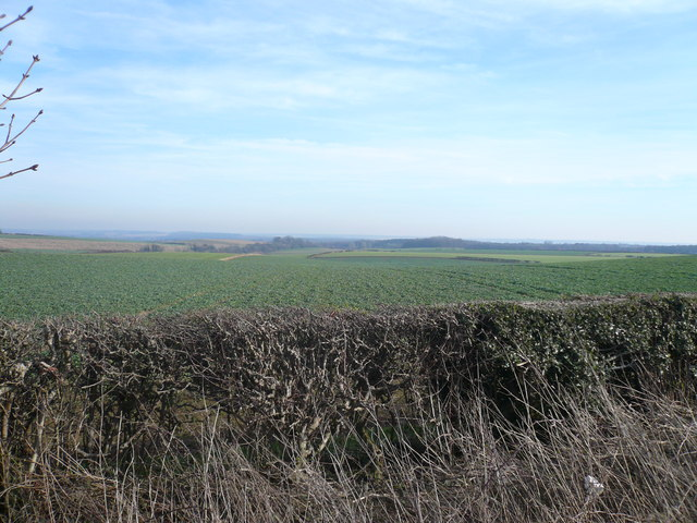 Fox Hill  - View across Farmland