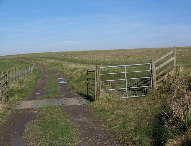 Bridle gate and cattle grid, Stratford Tony Down