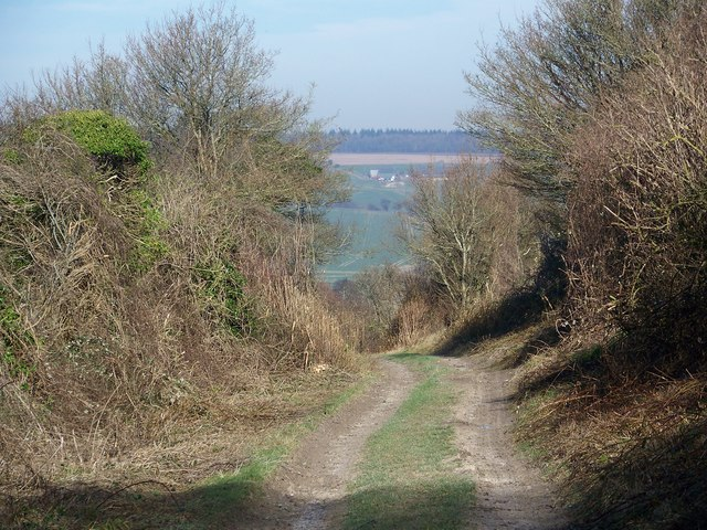 Bridleway to Throope Manor