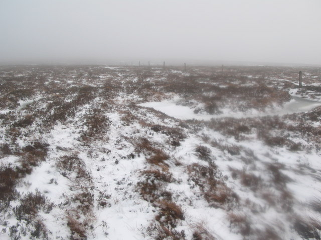 Middlehope Moor