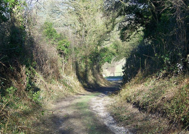 Bridleway junction, Throope