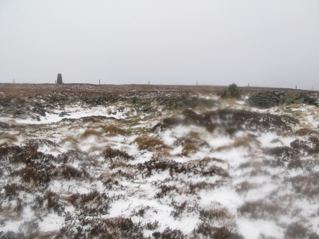 Ruin near the trig point on Hill 607