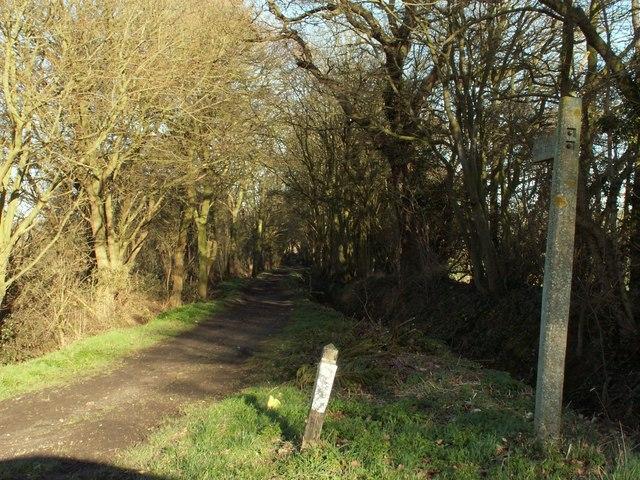 Public footpath that leads to Crondon Park