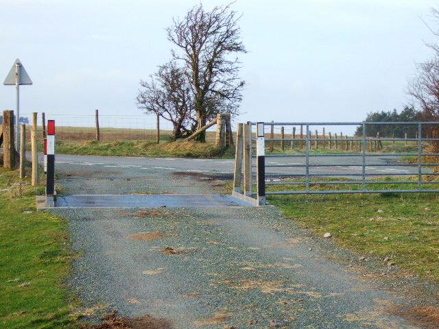 Cattle grid near Knuck Bank
