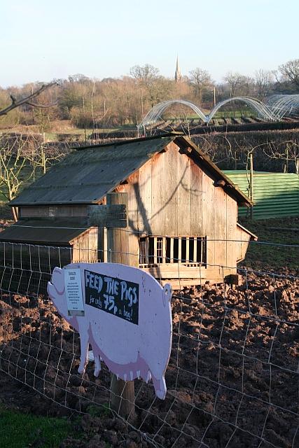 Clives Fruit Farm