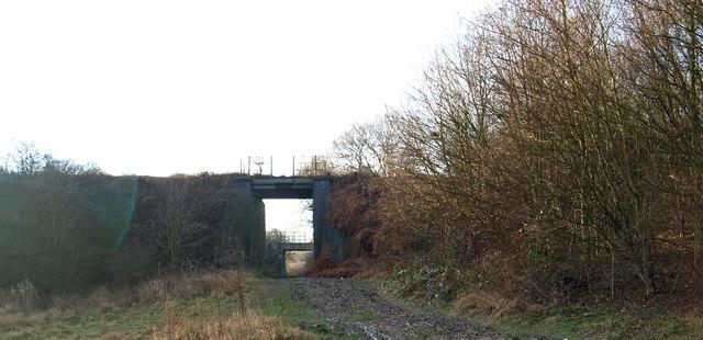 Disused rail bridge