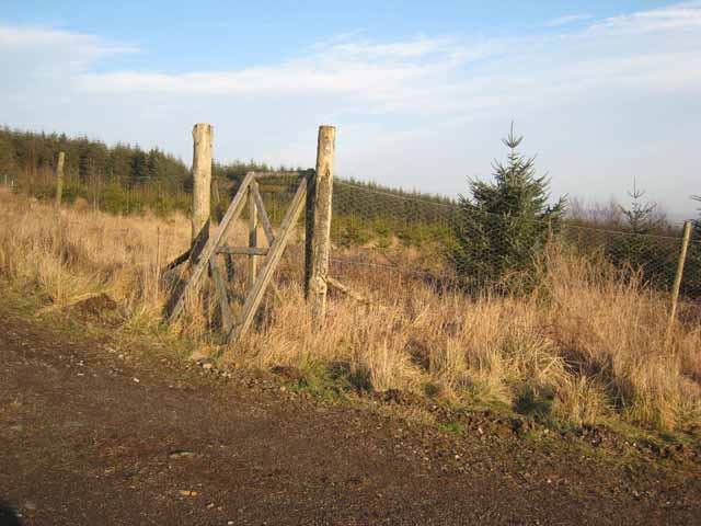 Deer-proof fence and gate on Chamot Hill