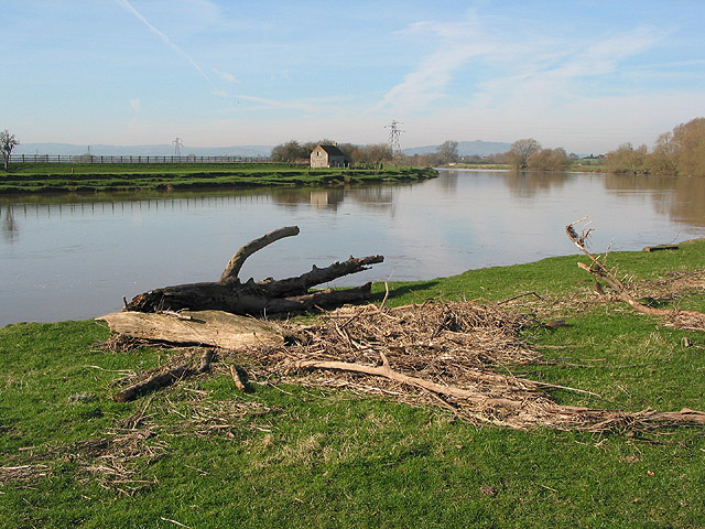 Debris on the river bank