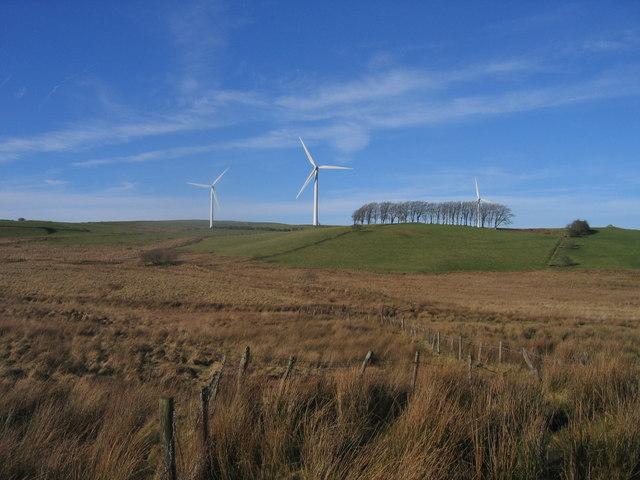 Tyrbeinau Gwynt / Wind Turbines