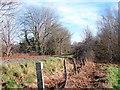SN6080 : Vale of Rheidol Railway track by John Lucas